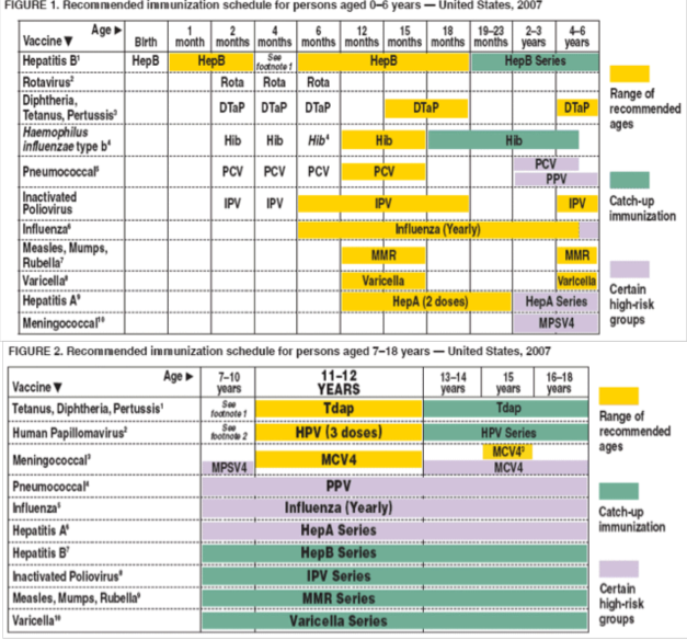 cdc_immunization_schedule